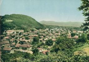 Град Берковица и берковското кале