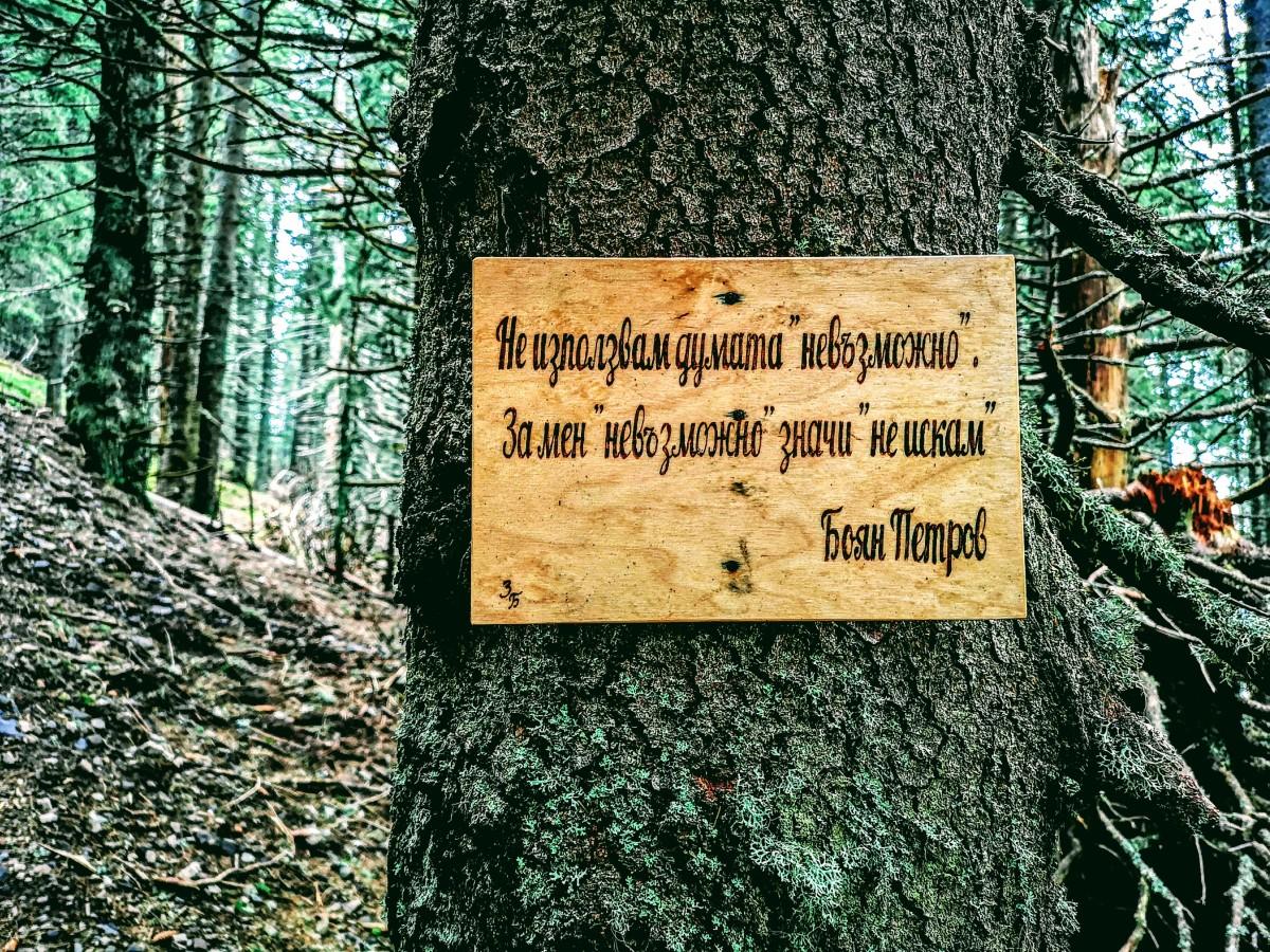 Пътеката на мъдростта