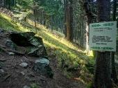 Вазов камък - любимо място на Иван Вазов, в подножието на връх Ком